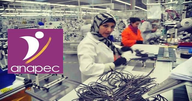 مصنع بمدينة طنجة يعلن عن توظيف 40 عامل وعاملة على الآلات بدون شهادة أو دبلوم